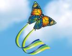 Einleiner Butterfly