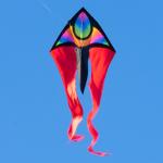 F-Tail XM SUPERNOVA